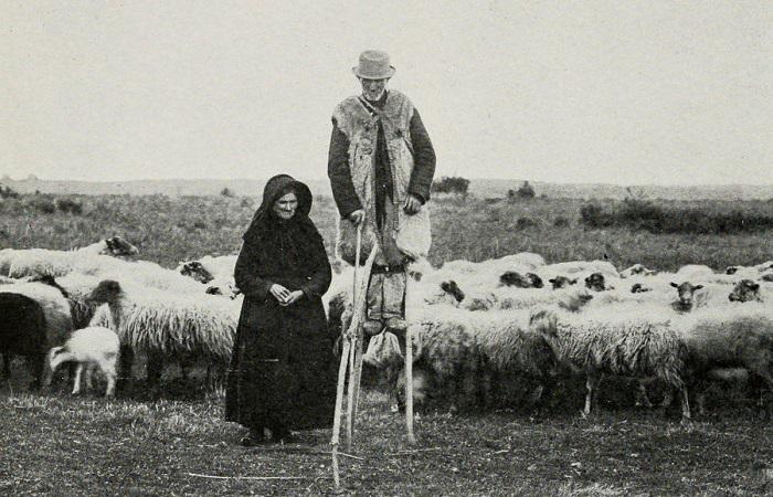 Высоко сижу - далеко гляжу: почему раньше некоторые перемещались только на ходулях