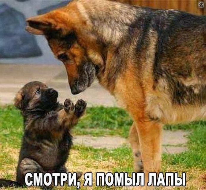 Фото, поднимающие настроение)