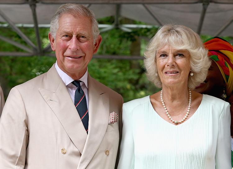 Принца Чарльза выписали из карантина после заражения коронавирусом Монархи,Британские монархи