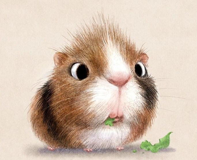 Рассказ о маленькой морской свинке с сердцем героя…