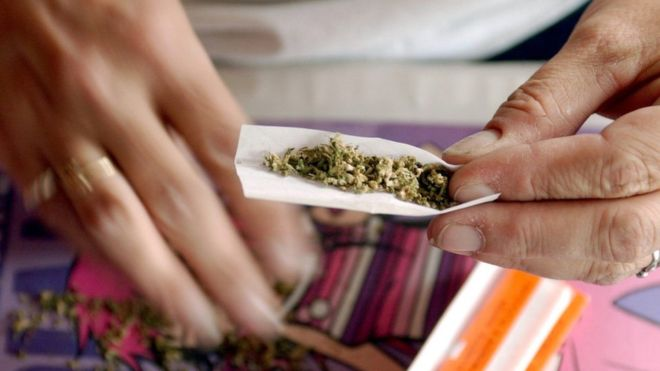 В Калифорнии легализовали марихуану