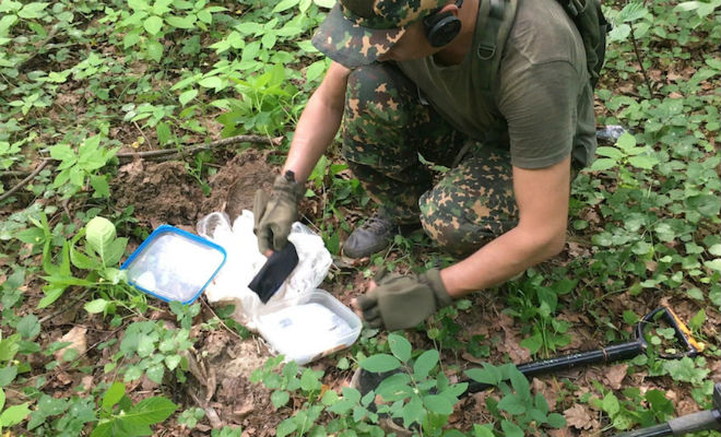 Неожиданный тайник в лесу: поисковики вскрыли старый контейнер с диском археология,лес,Пространство,тайник,черные копатели