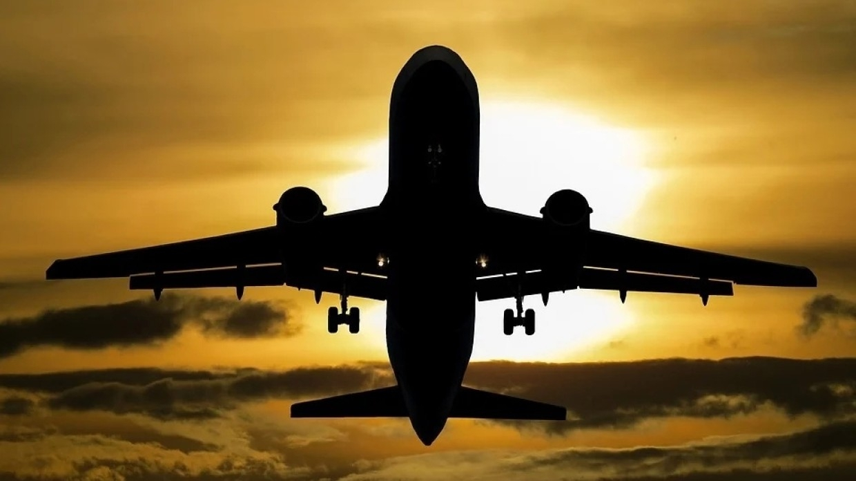 Авиапутешествие из Москвы в Брянск стало самым бюджетным в августе Общество