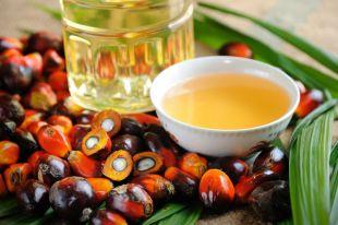 Жирные факты. Эксперты оправдали пальмовое масло и отметили опасность диет