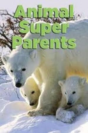 Лучшие родители в мире животных