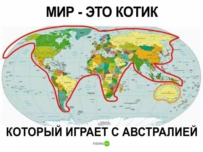 2. Мир - это просто котик в мире, забавно, карта, карта мира, карты, креатив, подборка, фото