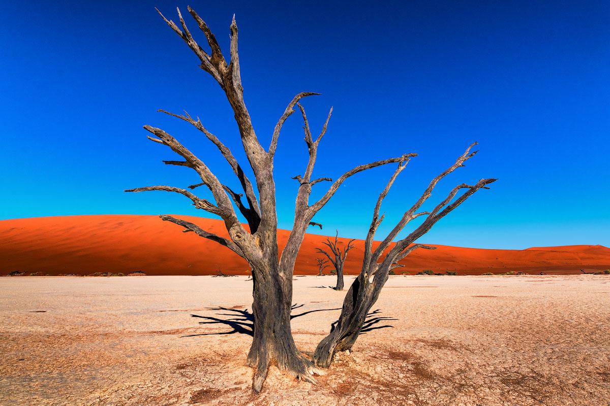Древнейшая пустыня мира