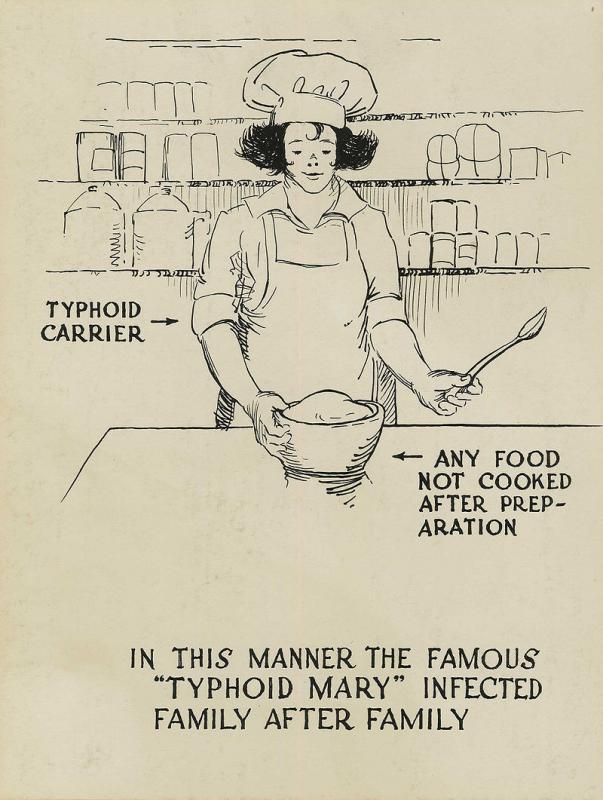 Кухарка, которая 10 лет держала в страхе весь Нью-Йорк история,США,тифозная мэри