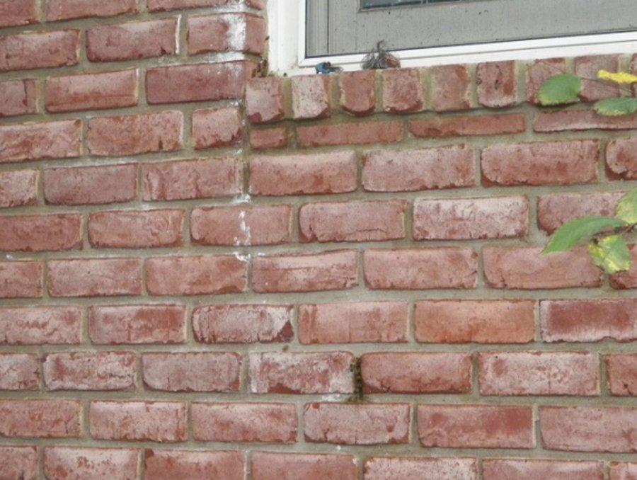 Когда в стене появляется необычный шум....