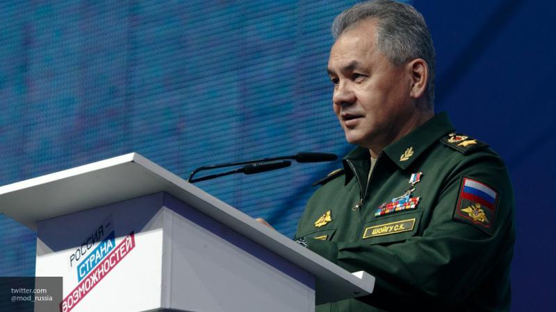 Шойгу рассказал о действиях ВКС РФ против боевиков в Сирии