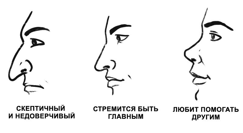 агентству характеристика черт лица картинки самая главная