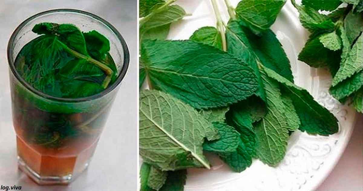 Ð'Ñего 1 лимонно-мÑтный напиток в день очиÑтит ваш организм полноÑтью от токÑинов
