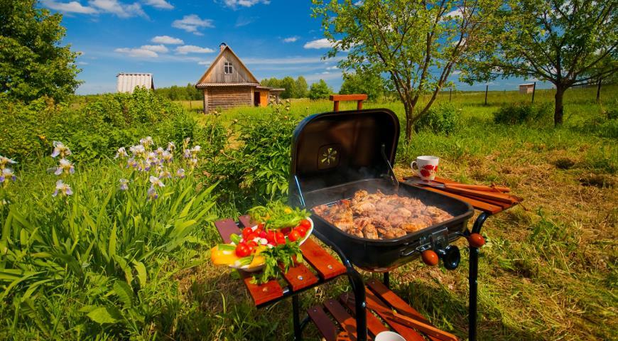 Российские дачники предпочитают шашлыки огороду