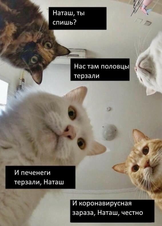 Кремлевский Скрудж власть,общество,Путин,россияне,экономика