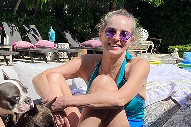 Шэрон Стоун в купальнике у бассейна проводит время с друзьями