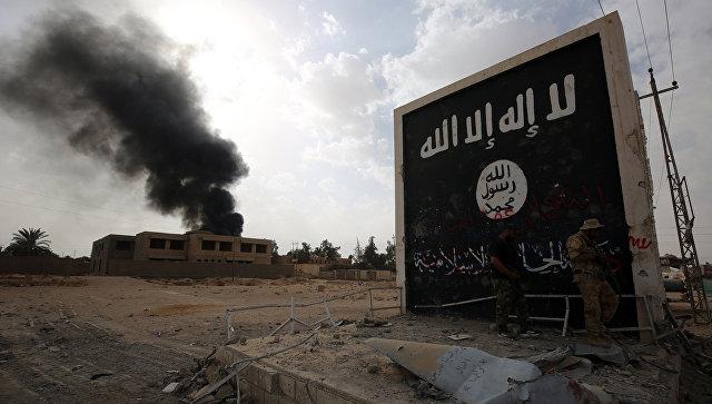Новости Сирии. Сегодня 24 фе…