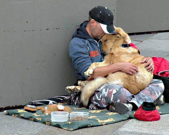 Парень заметил бездомного с …