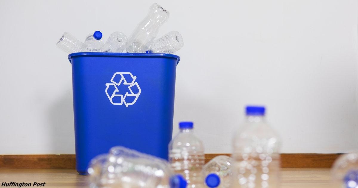 Почему повторно использовать пластиковую бутылку — это просто неразумно