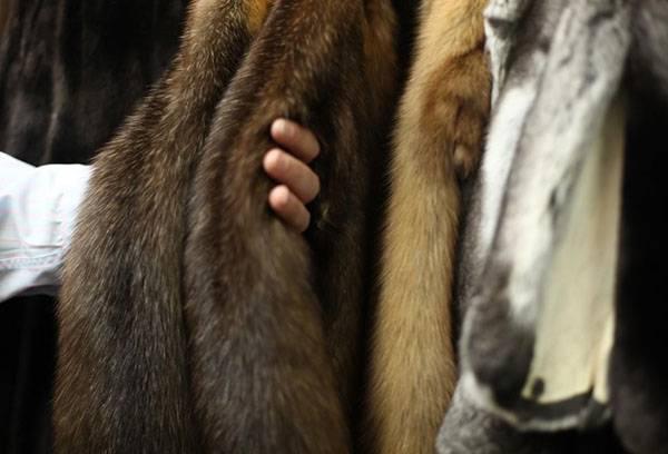 Одежда из меха