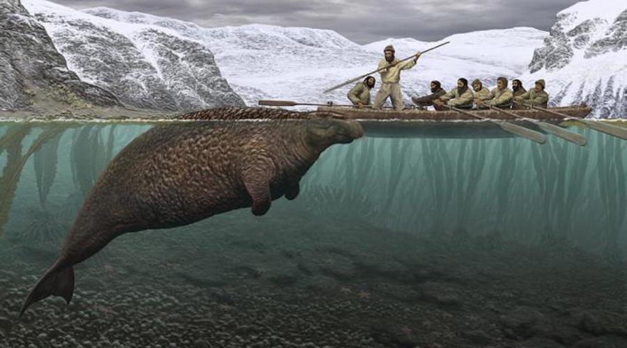 Животные, популяцию которых хотят восстановить