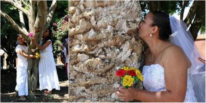 Массовая свадьба мексиканок …