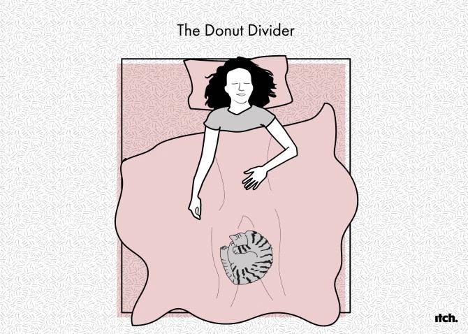 Позы всякие нужны, позы всякие важны: положение домашнего питомца в кровати говорит о его отношении к вам