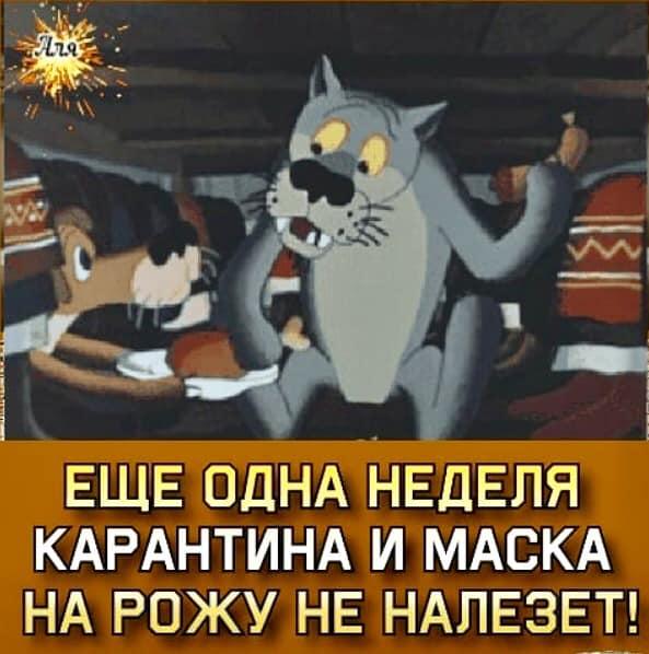 https://mtdata.ru/u27/photo6753/20884597323-0/original.jpeg#20884597323