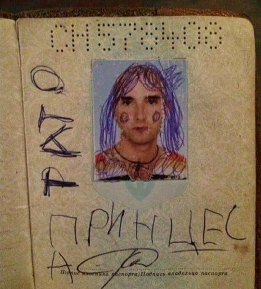 Открытки, прикольный паспорт картинки