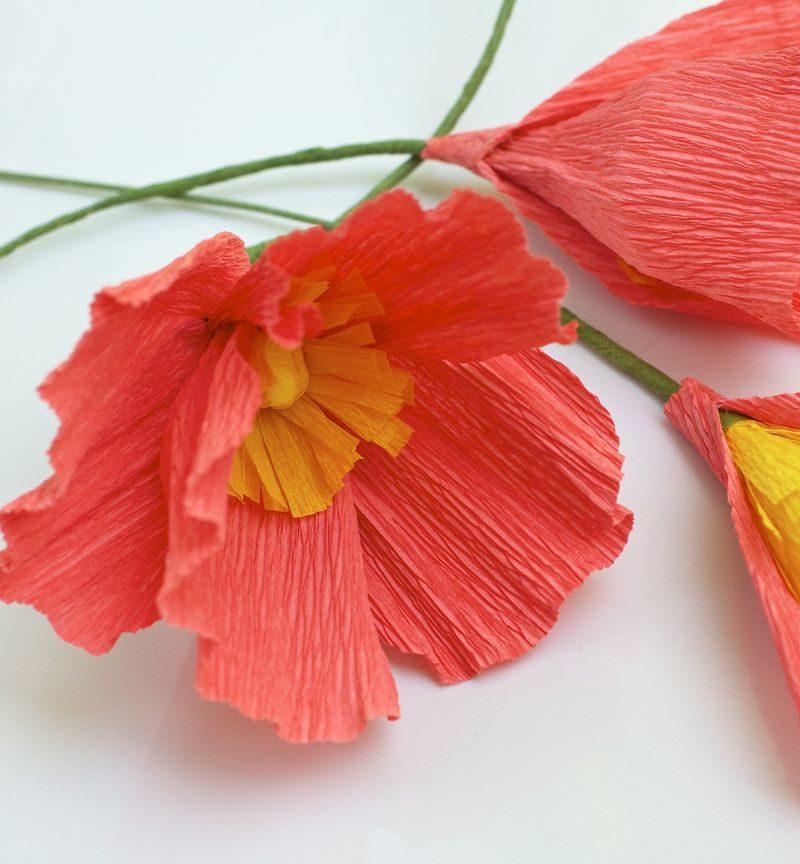Как сделать цветок из гофрированной бумаги своими руками для открытки