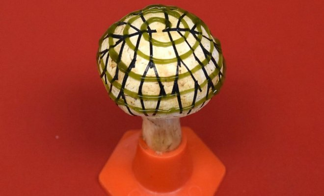 Бионический гриб из бактерий и графена может стать вечным светильником