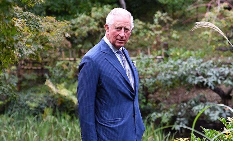 Принц Чарльз впервые появился на публике после заражения коронавирусом и рассказал о своем опыте жизни с COVID-19