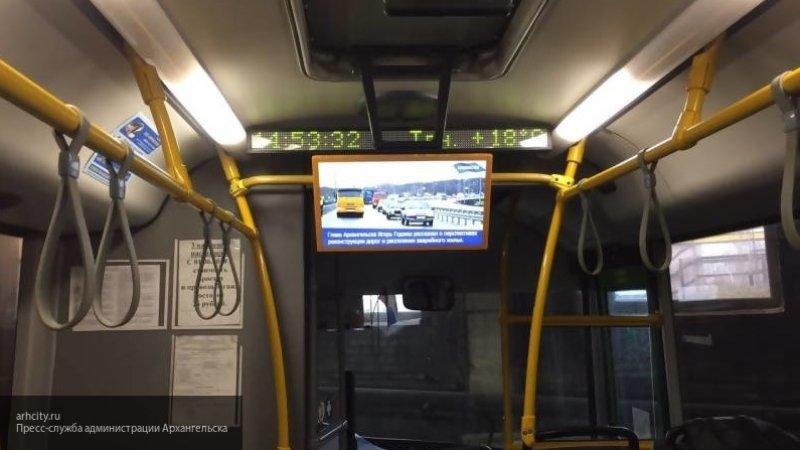 Ночные автобусы запустят в период ноябрьских праздников в Петербурге