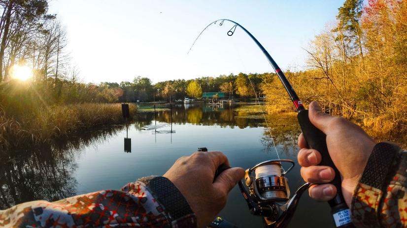 Рыбалка — дело клевое