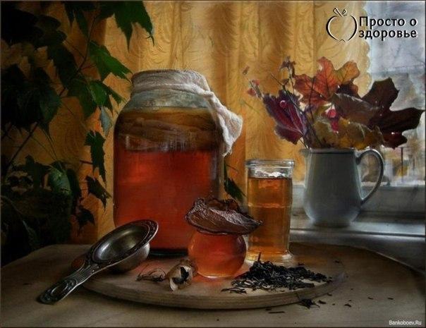 Любопытные подробности о чайном грибе