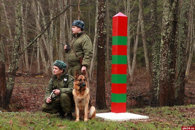 28 мая - День пограничника. Как используют носы пограничных собак