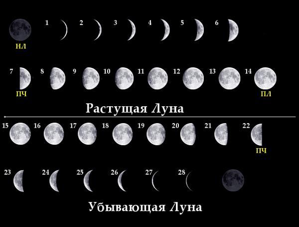 Фаза Луны сейчас, астрономические характеристики лунных фаз и положения Луны в пространстве онлайн