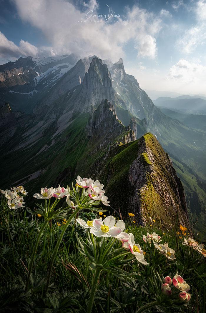 Наша планета - потрясающе красивое место! Вот 37 лучших фото природы, сделанных в 2018 году