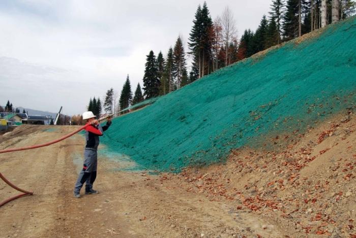 Для чего дорожные работники «красят» газоны в зеленый цвет