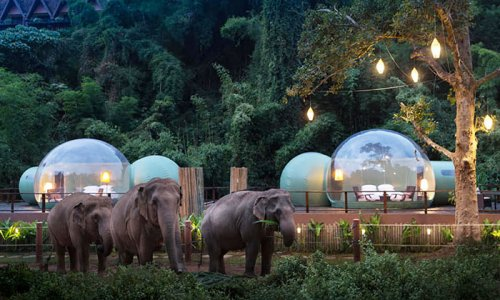 Таиланд. Ночь. Пузырь гостиницы,отели,Таиланд