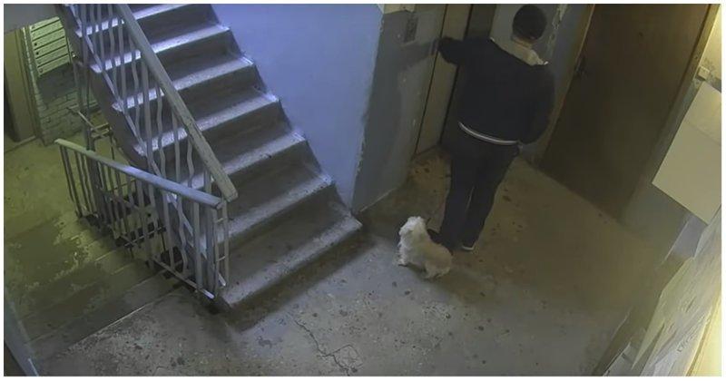Как воры-домушники изучают квартиры перед кражей