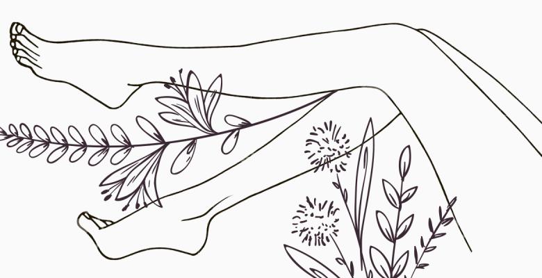Травы, которые помогут сохра…
