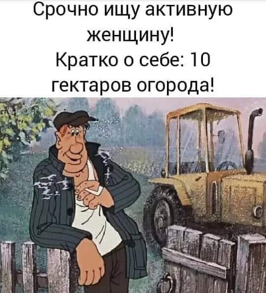 Милая моя, единственная, нежная, сладкая, добрая, знойная... когда, говорит, девчонок, нашел, Плохо, кнопочки, устраивает, Картер, Брежнев, нажму, упадет, бомба, потеряла, хорошо, кошелек, Доктор, люблю, экстремистов, российская, жизнь