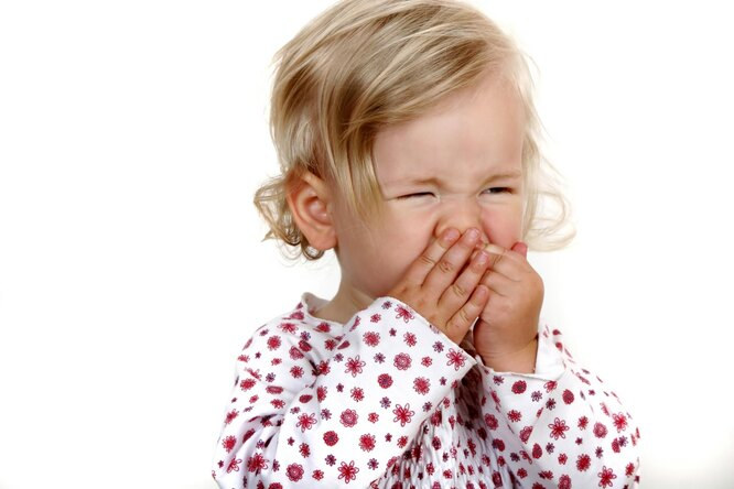 Аллергия — ошибка развитой цивилизации аллергия,здоровье,медицина