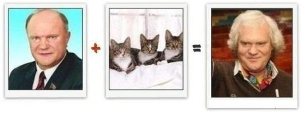 Эволюция с юмором