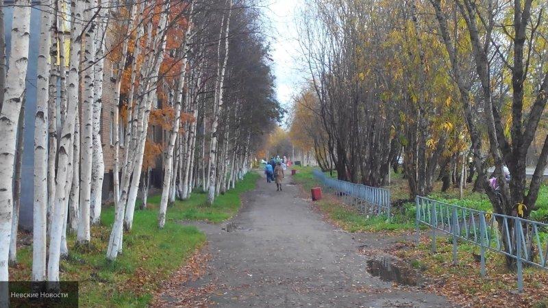 В Новосибирске горожане будут выбирать фонтан, который установят в Центральном парке