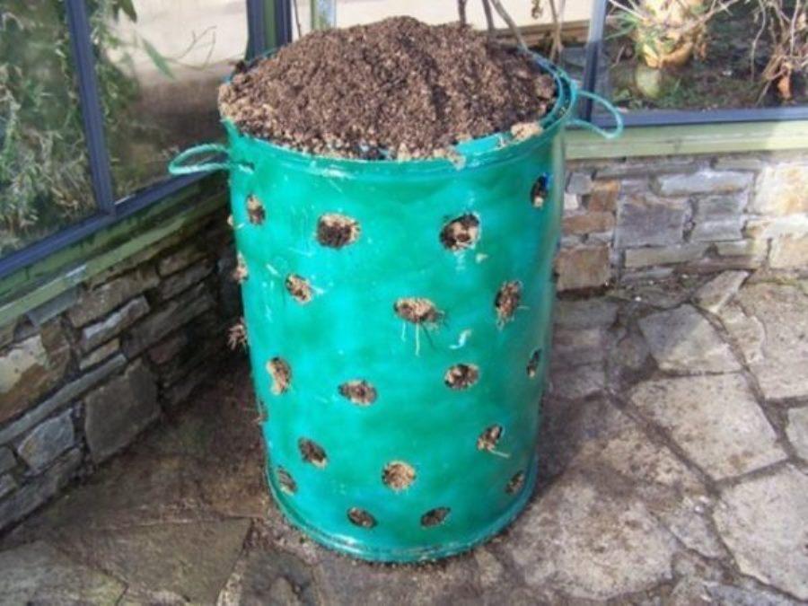 нас как посадить клубнику в бочке вертикально фото горловину платья