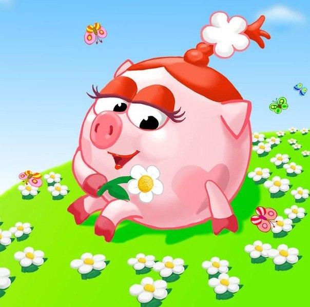 Какая ты свинья по знаку зодиака? Шуточный гороскоп