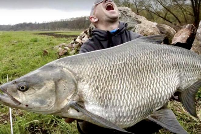 Аномально огромные рыбы, кот…