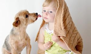 Белоснежная болонка оказалась не в силах слушать рёв малыша. И вот, что она сделала!