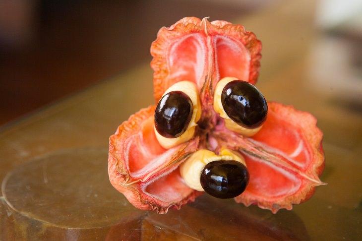 Фугу, кешью: лучше дважды подумать перед тем, как употреблять эти деликатесы